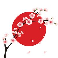 Vector sakura branch, flag. Realistic floral asian design for menu