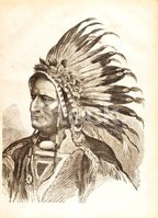 Native American,North Ameri...