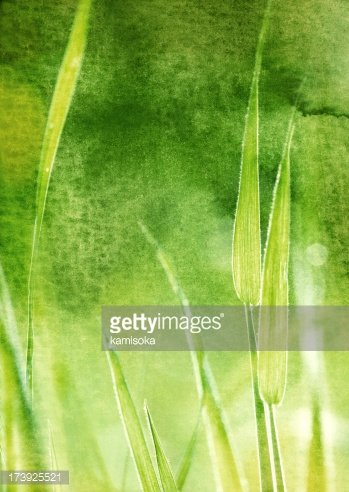 Watercolor Painting,Grass,C...