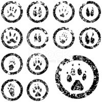 Rubber Stamp,Paw,Footprint,...