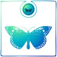 Butterfly - Insect,Blue,Geo...