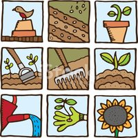 Gardening,Nature,Front or B...