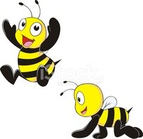 Bee,Baby,Bumblebee,Young An...
