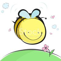 Bee,Insect,Flower,Single Fl...