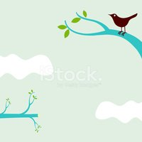 Bird,Branch,Environmental C...