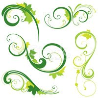Leaf,Vector,Swirl,Green Col...