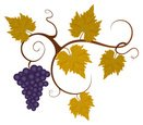 Grape,Vine,Leaf,Fruit,Autum...