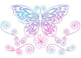 Butterfly - Insect,Scribble...