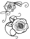 Rose - Flower,Thorn,Black A...