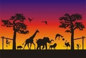 Animal,Africa,Silhouette,Af...