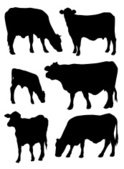 Cow,Silhouette,Cattle,Vecto...