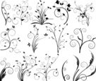 Growth,Flower,Shape,Floral Pa…