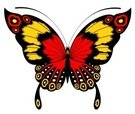Butterfly - Insect,Red,Purp...