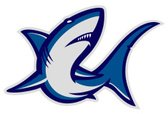 Shark,Mascot,Fish,Symbol,Ve...