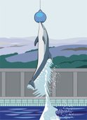 Dolphin,Jumping,Painted Ima...