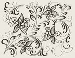 Orchid,Vector,Scroll Shape,...