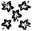 Flower,Black Color,White,Is...