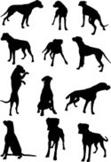 Dog,Silhouette,Boxer,Vector...