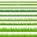 Grass,Green Color,Nature,Pl...