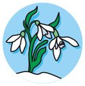 Snowdrop,March,Number 1,Sno...
