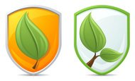 Shield,Leaf,Growth,Vector,S...
