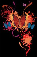 Butterfly - Insect,Spray,Mu...