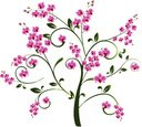 Orchid,Flower,Backgrounds,A...