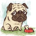 Dog,Pug,Drawing - Art Produ...