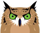 Owl,Great Horned Owl,Human ...