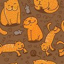 Domestic Cat,Pattern,Humor,...