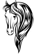 Horse,Animal Head,Vector,C...