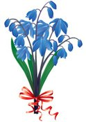 Bouquet,Gift,Plant,Blue,Red...