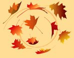 Leaf,Autumn,Falling,Vector,...
