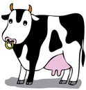 Udder,Farm,Child,Domestic C...