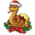 Snake,2013,New Year,Reptile...