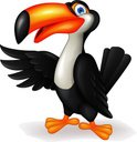 Toucan,Cartoon,Fun,Gesturin...