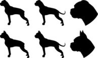 Boxer,Silhouette,Dog,Puppy,...