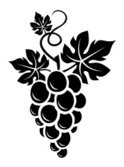 Grape,Bunch,Silhouette,Vine...