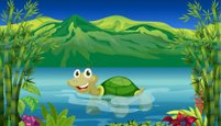 Turtle,Green Color,Environm...