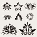 Floral Pattern,Star - Space,C…