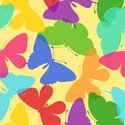 Butterfly - Insect,Pattern,...