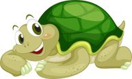 Small,Turtle,Young Animal,M...