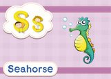 Sea Horse,Workbook,Preschoo...