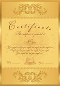 Gold Colored,Invitation,Tic...