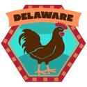 Delaware,Luggage Tag,Label,...