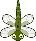 Cute,Dragonfly,Green Color,...