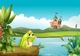 Frog,Land,Hill,Pond,Lake,To...