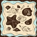 Pattern,Animal Shell,Sea,Fi...