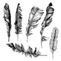 White,Old-fashioned,Feather...