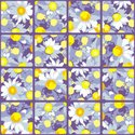 Pattern,Colors,Backgrounds,...